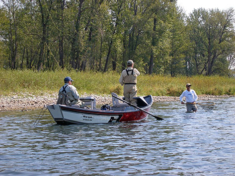 guided fly fishing trips alberta